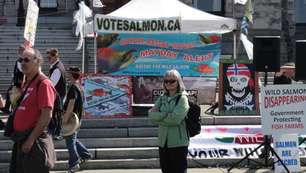 Salmon-Are-Sacred-rally-in-Victoria