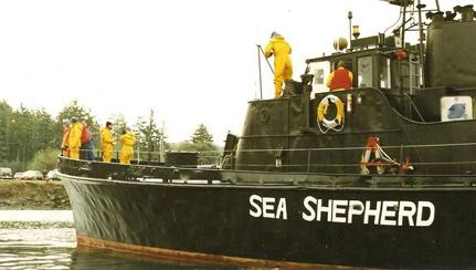 Sea-Shepherd-Sirenian-Nea-Bay