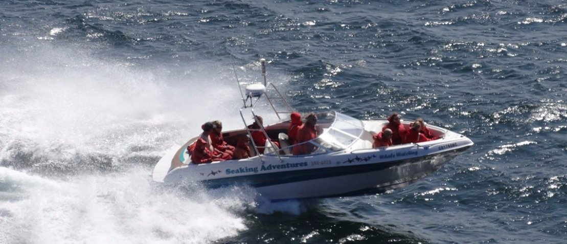 SeaKing-Boat