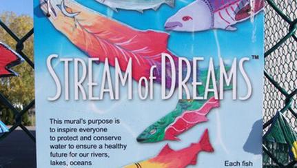 Stream-of-Dreams-in-Victoria