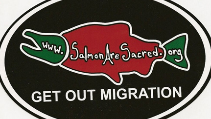 salmon-migration-logo