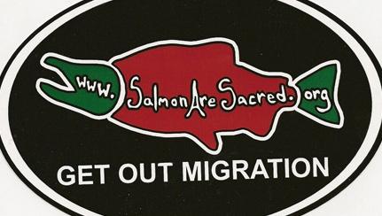 salmon-migration-logo